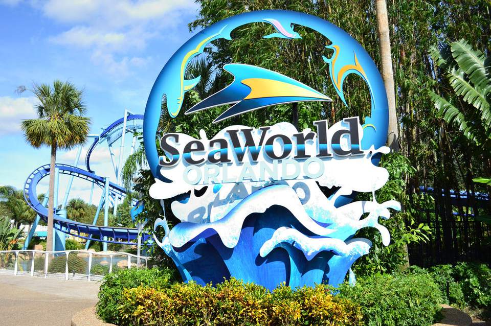Seaworld a wold to its own