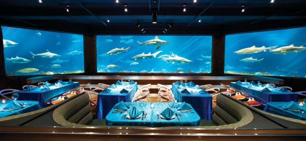 Dine with sharks at seaworld
